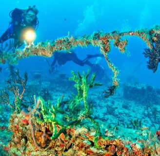 Artificial Reefs:  Everything  you should  know