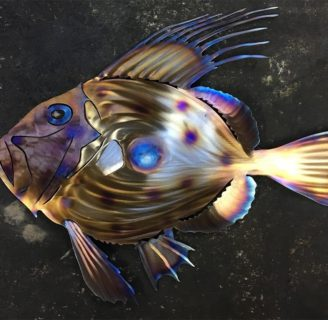 John Dory Fish: Characteristics, types, curious facts and more….