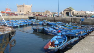 European Sea Bass: Fishing Industry in Morroco