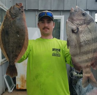 Gray Sole: Characteristics, habitat, reproduction and more…