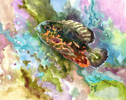 Cichlid Fish: Characteristics, types, care and more