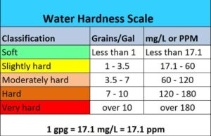 Molly fish: hardness scale